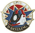 USA  SPORTS WRESTING MEDAL